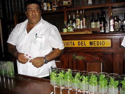 800px-Bodeguita_del_Medio,_Havana,_Cuba_6.jpg